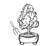 Multiplication des bonsaïs